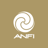 Anfi Group