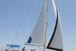 Fuerza 7 Sailing Boat Excursion